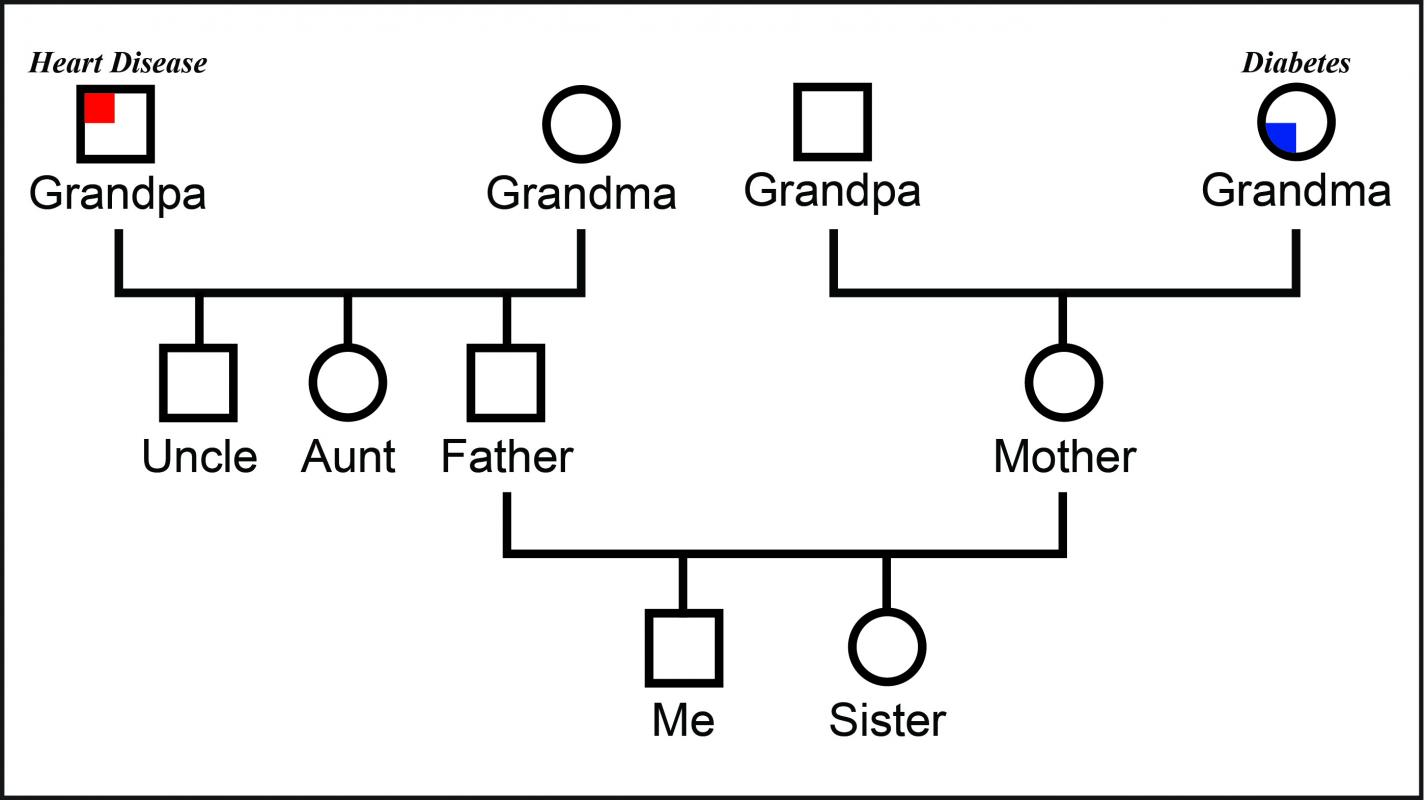 example of genogram