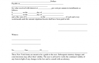 example of promissory note example promissory note form template
