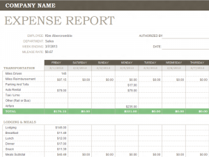 excel expense report weekly expense report