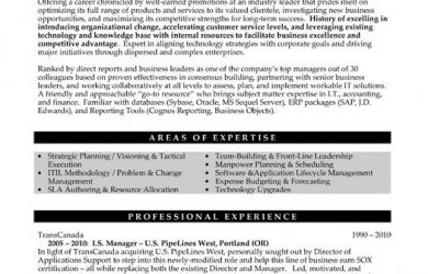 executive resume samples ddebdffebeafd executive resume best resume
