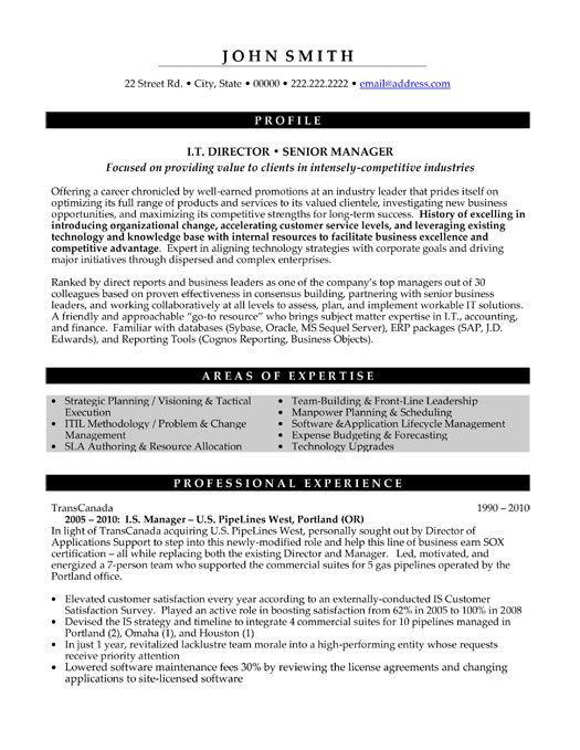 Executive Resume Samples | Template Business