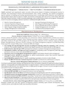 executive resume samples resume sample senior sales executive pg