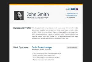executive resume templates bio resume template resume template hello miss poppy design free throughout resume bio example