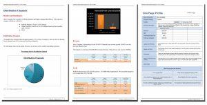 executive summary format example im report x
