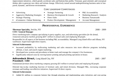 executive summary samples best vp of marketing resume l