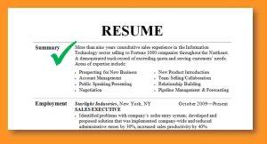 executive summary samples resume summary examples resume summary examples resumesummary