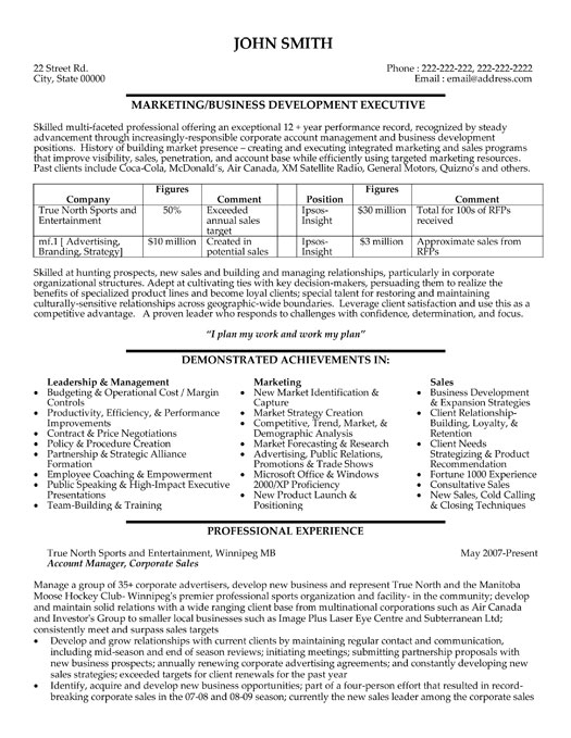 Executive Summary Template Doc  Template Business