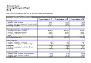 expense report templates excel knowledge management report