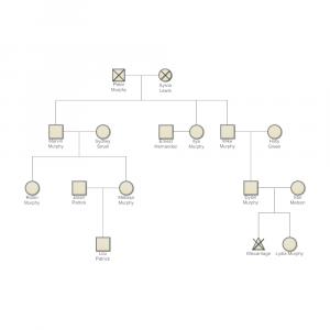 family genogram example edb bf b b abfe