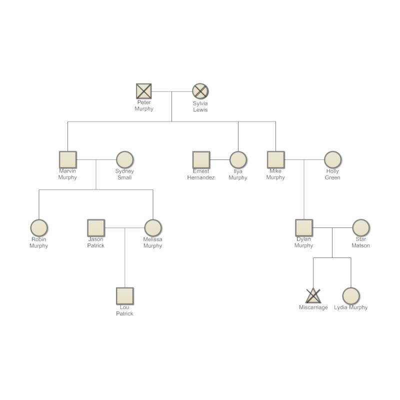 family genogram example