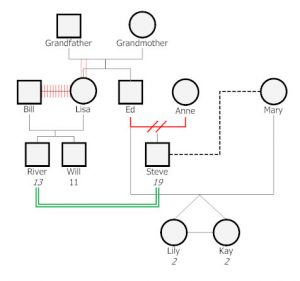 family genogram example genogram example