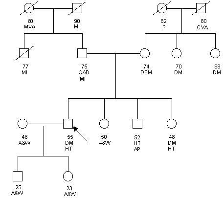 how to create a genogram