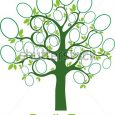 family tree design family tree vector