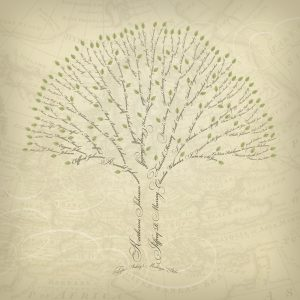family tree design legacyfamilytrees