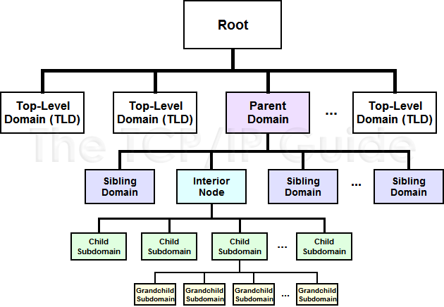 ancestry tree diagram koni polycode co