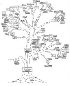 family tree diagram jrh family tree