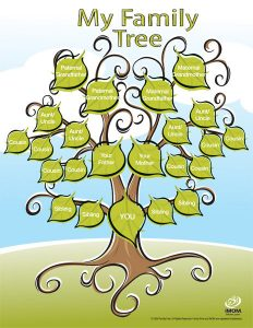 family tree images imom family tree package px