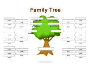 family tree template google docs family tree with aunts uncles cousins