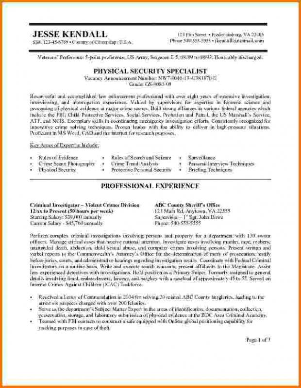 Federal Resume Example Template Business
