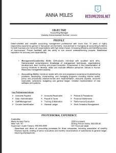 federal resume template federal resume example