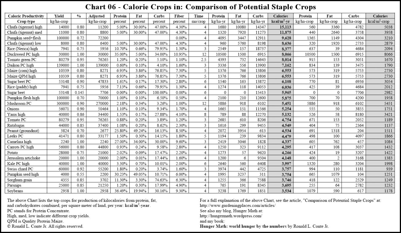 graphic about Printable Calorie Chart named Food stuff Calorie Chart Template Office