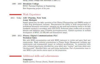 formatting a resume best resume format