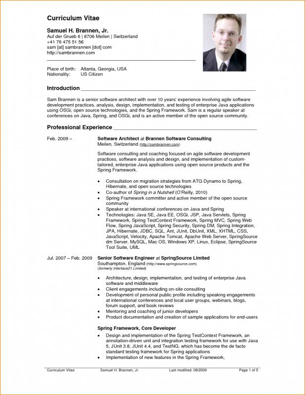 Fre Cv Template  Template Business