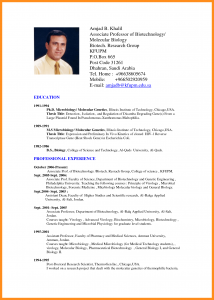 fre cv template cv format doc free download