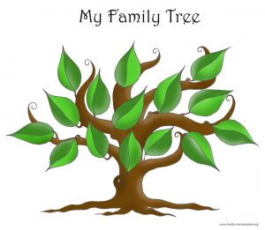 free family tree template word simple family tree template x