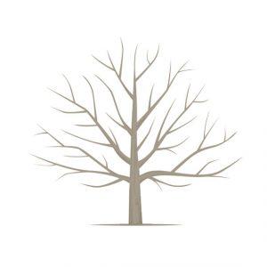 free printable family tree template il xn he