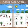 free printable lesson plans for toddlers apple life cycle