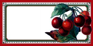 free sign in sheet graphics fairy cherry rectangle