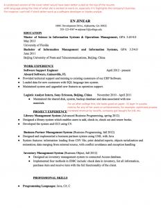 front end developer resume web dev page x