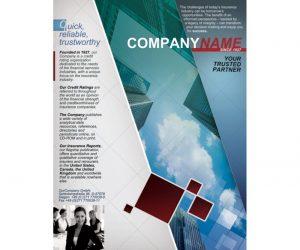 half fold brochure template informational brochure template x