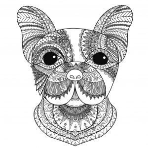 halloween coloring pages pdf malbuch fur erwachsene tiere