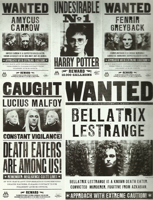 graphic regarding Harry Potter Wanted Posters Printable referred to as Harry Potter Printable Posters Template Place of work