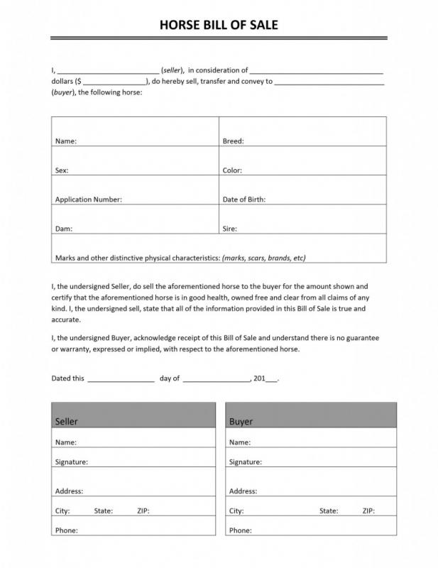 Horse Bill Of Sale  Template Business