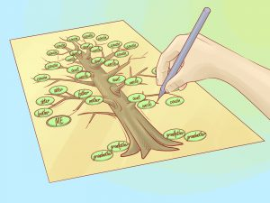 how to make family tree draw a family tree step version