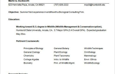 how to write a high school resume internship resume template free samples examplespsd internship resume template