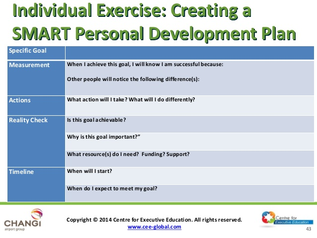 individual development plan examples