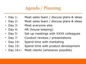 individual development plan examples first days as sales director sample