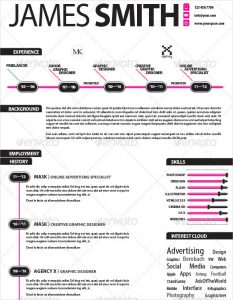 infographic resume template experienced infographic resume template indesign download