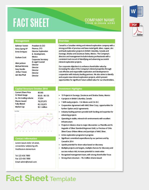 information sheet template