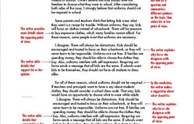 informative essay example sample persuasive essay paper example