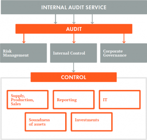 internal audit report picture