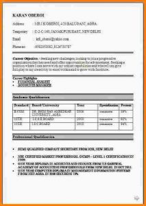 inventory sheet pdf resume format for fresher graduate resumeformat jpg