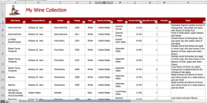 inventory spreadsheet template screen shot at pm