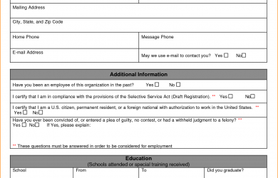 job application sample a job application example
