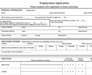 job application template job application template