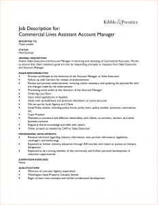 job description format accounts assistant job description